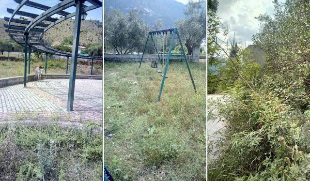 Γκρίνια στο Παγκράτι Σουλίου για την βλάστηση στους δρόμους και την παιδική χαρά
