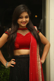 Priyanka new dazzling pics 023.jpg