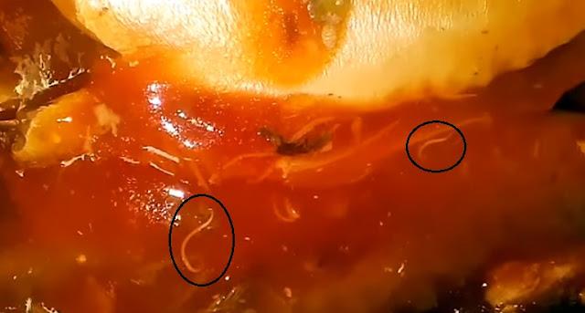 Bahaya Ikan Makarel Bercacing pada Tubuh