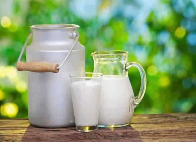 dieta cetogenica leche desnatada