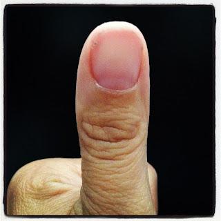 The Vertical Rekhas Of The Thumb Palmistry