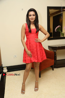 Actress Catherine Tresa Latest Pos in Red Short Dress at Intex Air Conditioners Launch  0034.jpg