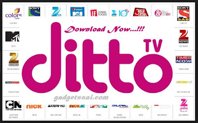 ditto-tv-pc-windows-mac
