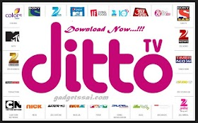 Download Ditto TV for Android, ios, Windows, Mac