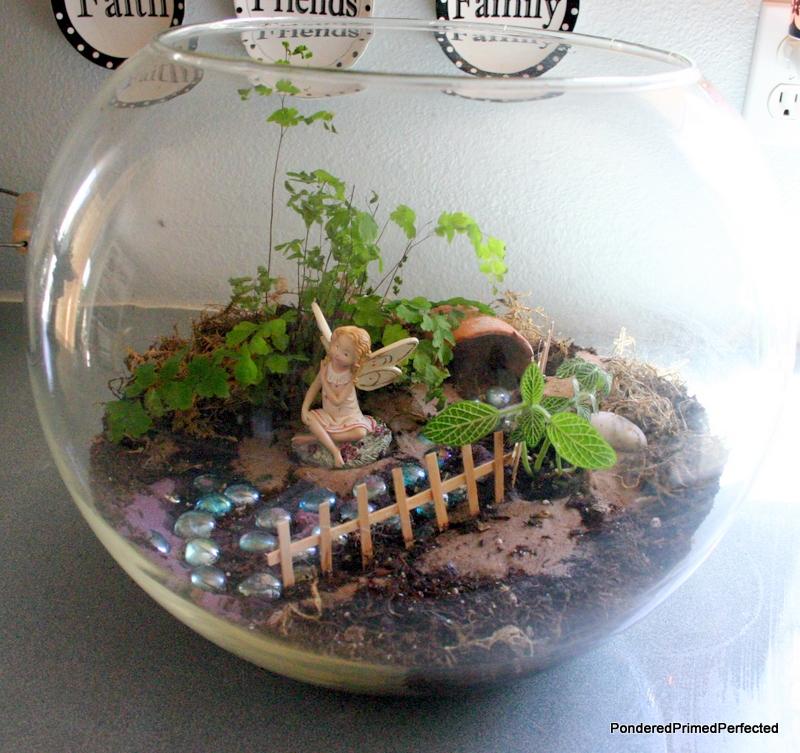 Pondered Primed Perfected Fairy Garden Terrarium