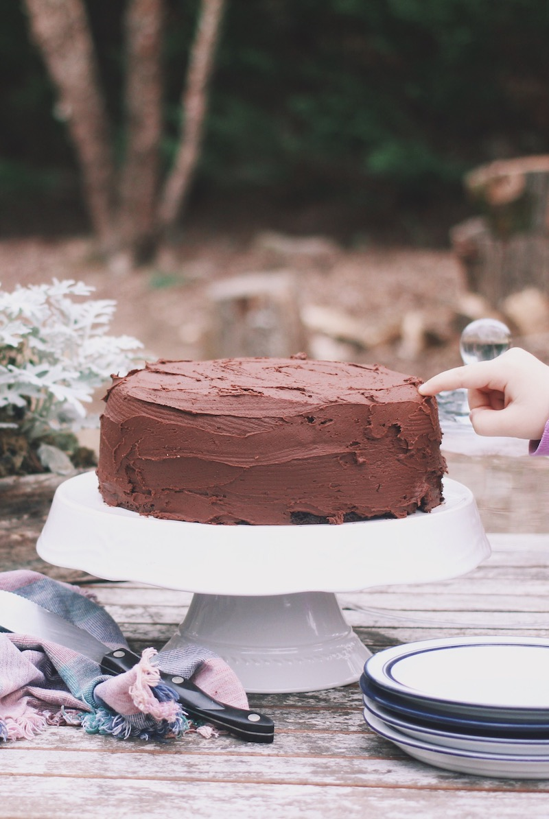 Wild Precious perfecting no reason chocolate cake