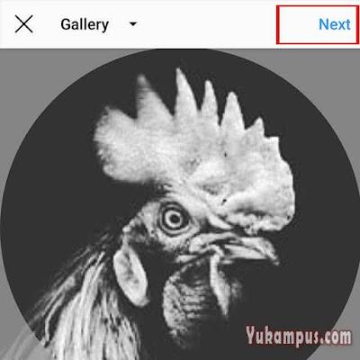 mengganti foto profil instagram