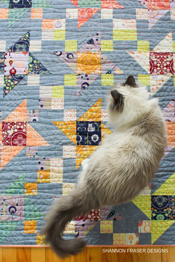 Pips on duty! | Fall Irish Vortex Quilt | Shannon Fraser Designs