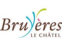 http://www.ville-bruyereslechatel.fr/
