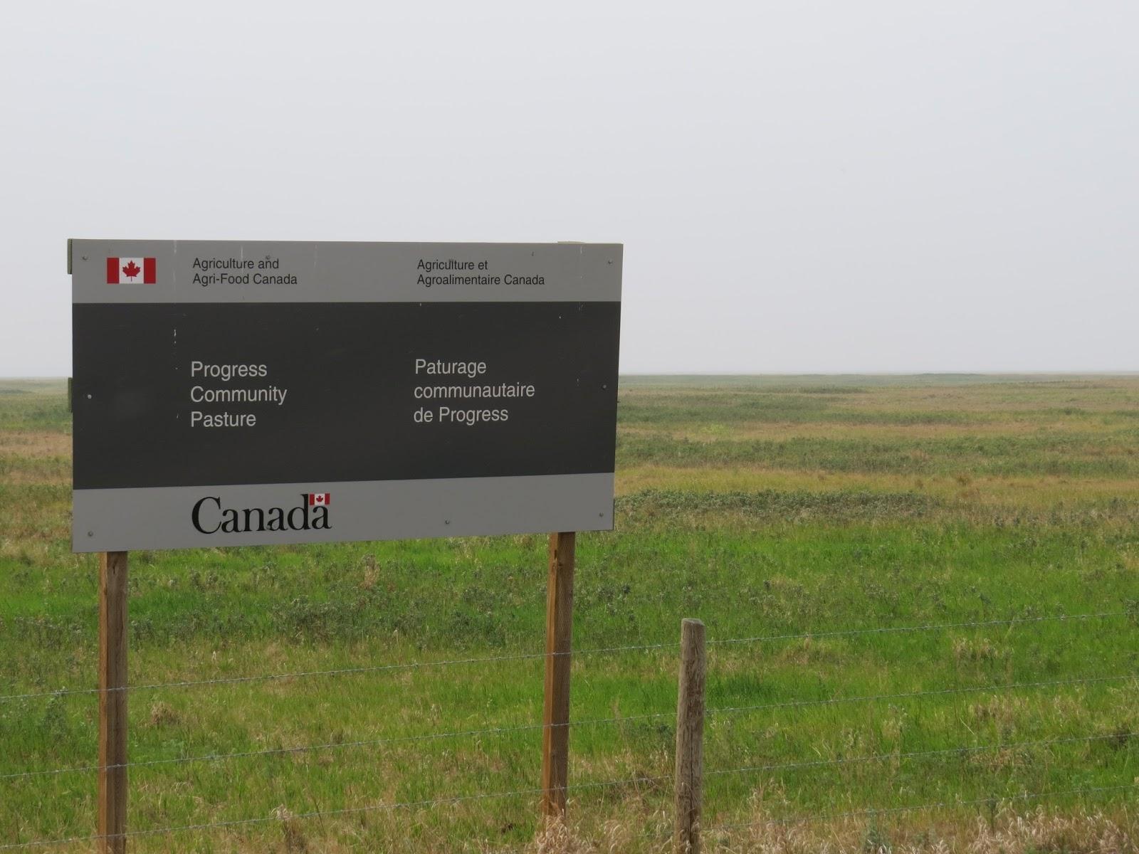 Trevor Herriot's Grass Notes: Hopeful news: Ottawa is listening!