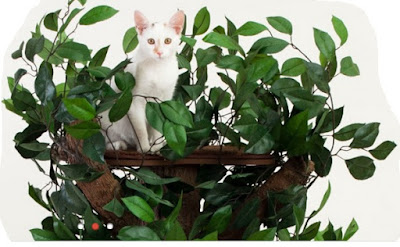 Spoil your cat with a realistic cat tree with leaves.