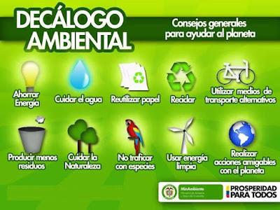 Infografía Medio Ambiente