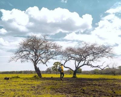 Menelusuri alam Afrika di ujung Jawa - Taman Nasional Baluran