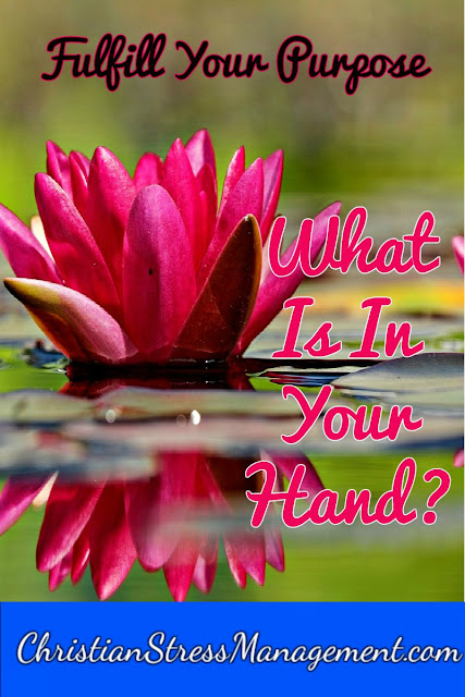 Fulfill your life's purpose: What is in your hand?
