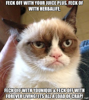 Feck off with herbalife juice plus forever living grumpy cat meme