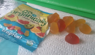 go organically fruit snacks 2