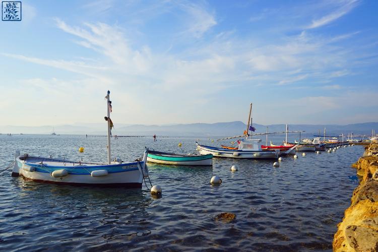 Le Chameau Bleu - Blog Voyage Sud Est France - Bateaux dans la lagune du Gaou - Brusc
