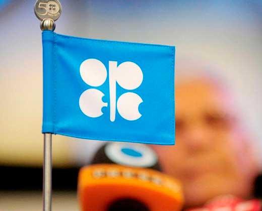 La OPEP anuncia que los precios del petróleo subirán este año