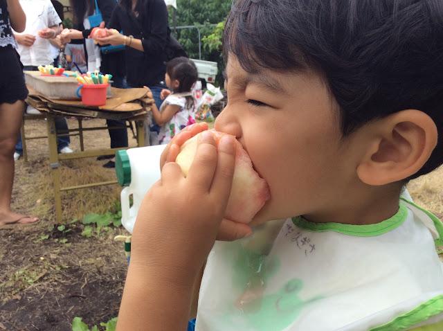 幼児と夏の日帰旅行、桃狩り、ラベンダー、伊香保温泉(東京 to 群馬)