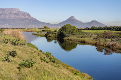 Table Bay Nature Reserve - Diep River View