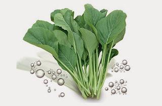Hasil gambar untuk sayuran sawi hijau