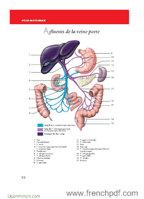 t 233 l 233 charger le dictionnaire m 233 dical de poche pdf gratuit en couleurs livres pdf de frenchpdf