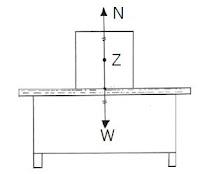 Pengertian, Rumus dan Bunyi Hukum Newton 1,2,3 serta Contoh Soal Hukum Newton