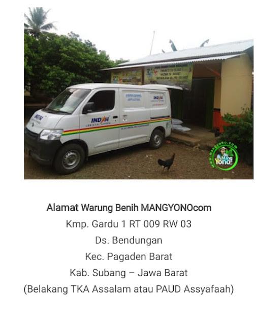 Warung Benih MANG YONO - MANGYONO.com  Subang - Jabar