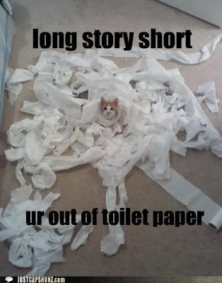funny cats, cats in trouble, mischievous cats, white cat, cat toilet paper, cat shaming