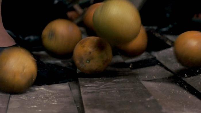 Frida screenshot - oranges