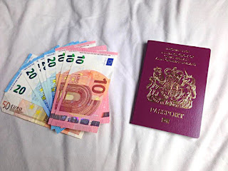 passport, money, foreign exchange, euro, travel, holiday