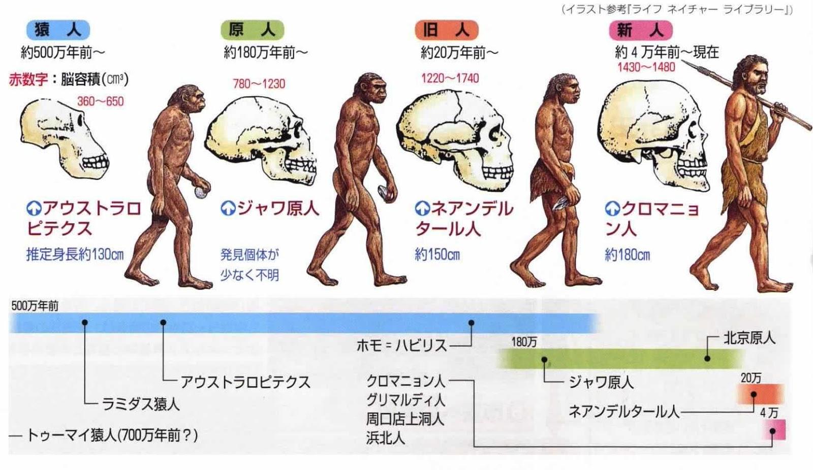 「ダーウィン進化論」完全論破!! AIが「人類には未知の祖先がいる」とゲノム解析で明らかにwww