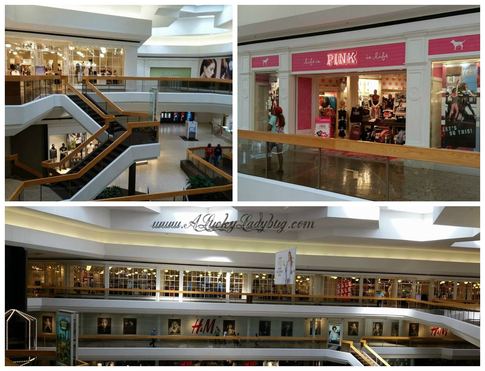 6f7cb50b54 ... mall is our very own Fairlane Town Center Mall. Owned by the Starwood  Retail Partners