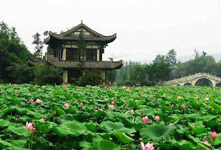 Lotus Mountain - Salika Travel - Hongkong Group Series Jan-Mar 2018