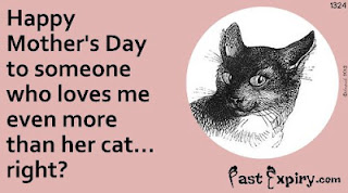 Cartoon about animals, cats, Mother's Day, relationships, Ecard,