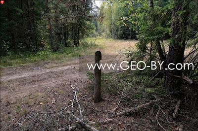 Налибокская пуща. Квартальный столб на лесной дороге