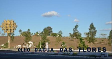 Comunidades quilombolas de Alagoas vendem produtos para o Programa de Aquisição de Alimentos