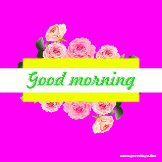 image contains good morning message with flowers