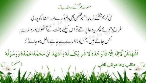 aqwal e zareen aqwal e zareen in urdu aqwal in urdu