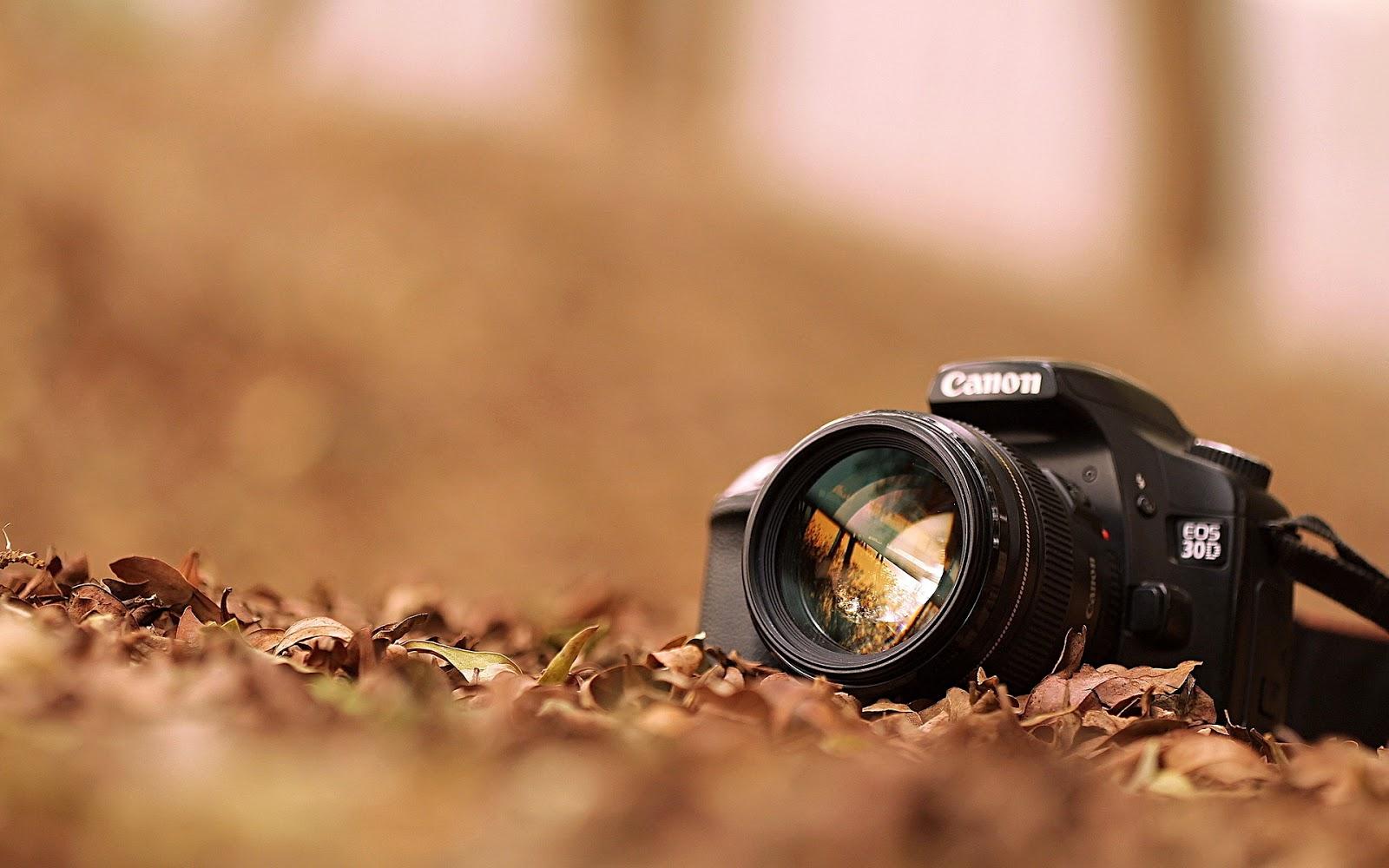 Cara Seting Kamera DSLR Agar Hasil Tajam