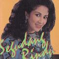 Lirik Lagu Segudang Rindu - Camelia Malik