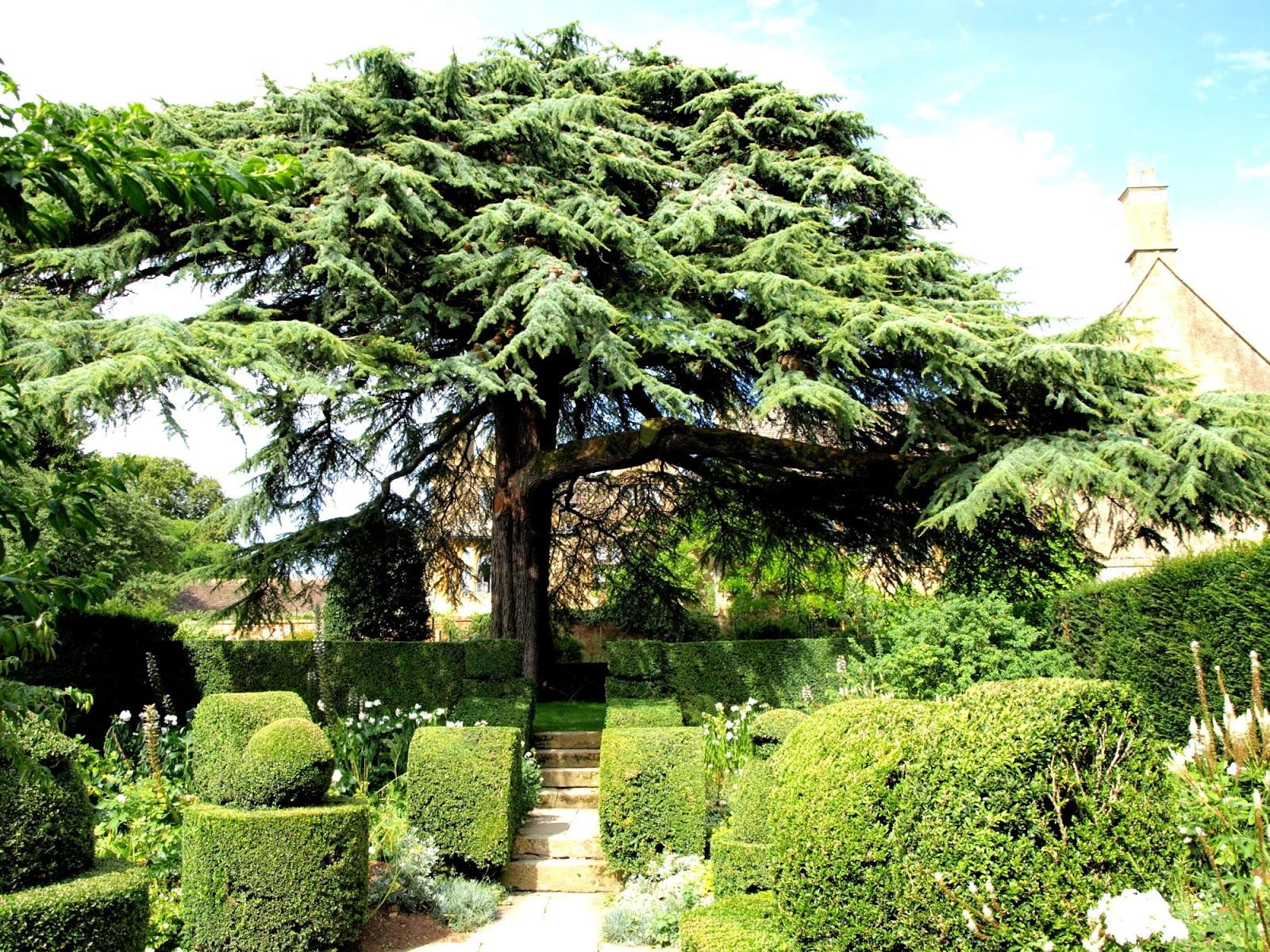Trädgård i torslanda: hidcote manor; england
