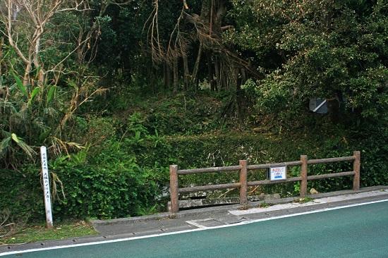 イリヌカー(西井泉)の写真