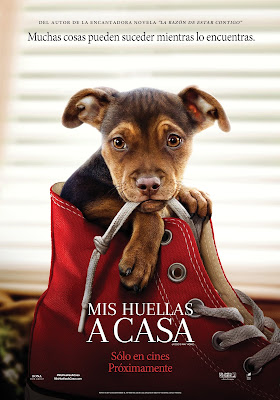 A Dogs Way Home [2019] [DVDR] [R1] [NTSC] [Latino]