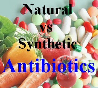 Synthetic Antibiotics Vs Natural Antibiotics
