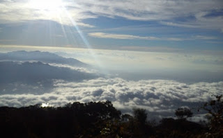 Pendakian Gunung Cikuray Garu Yang Menantang