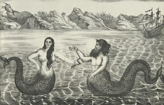 hewan mitos yang belum terungkap, penampakan putri duyung