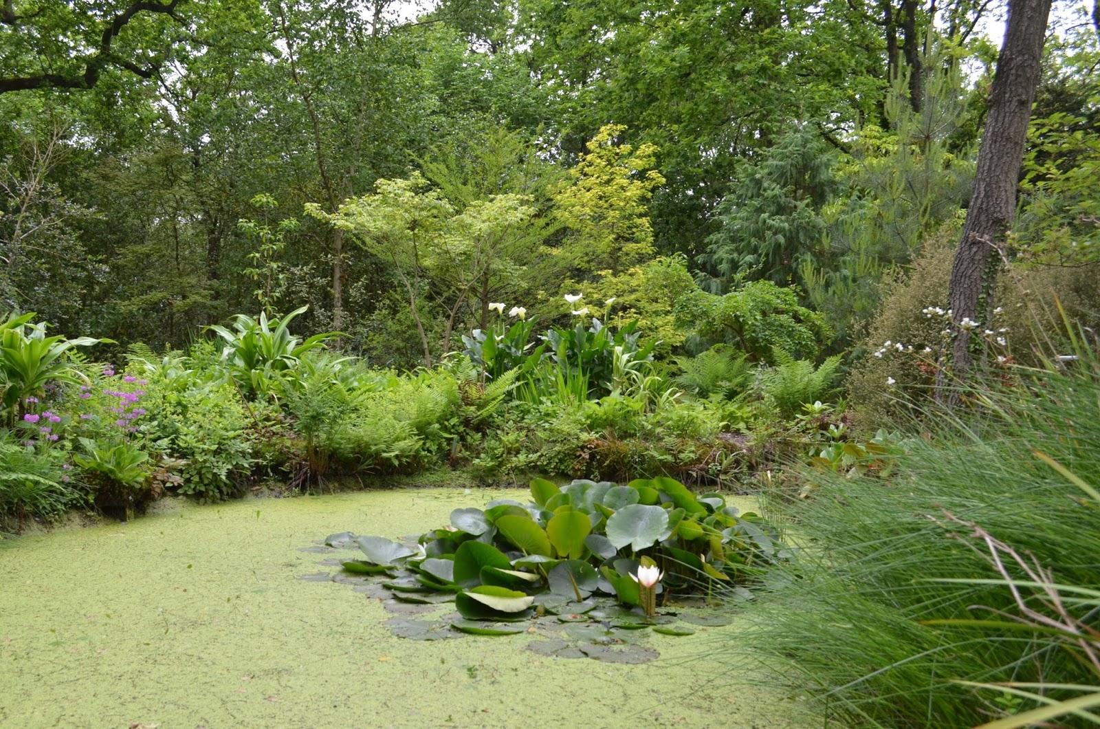 Une visite au jardin de vast rival ste marguerite sur for Jardin 76