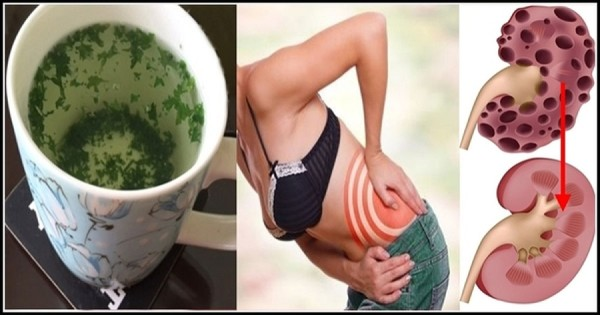 How To Cleanse Your Kidneys Almost Instantly With This Natural Home Drink