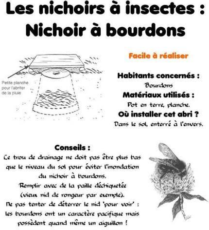 Breuillet nature conna tre les insectes pollinisateurs et les accueillir au jardin - Hotel a insectes nature et decouverte ...